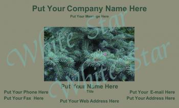 Spruce General Card 0018