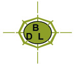 Beeline Advertising Logo