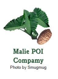 Melie POI Company Logo
